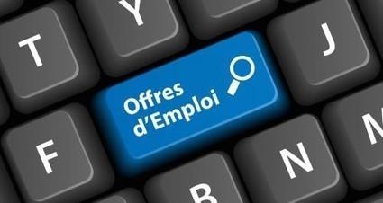 Recherche d'emploi : les principaux réseaux sociaux à utiliser – Entreprendre.fr | CV et recrutement innovant... | Scoop.it