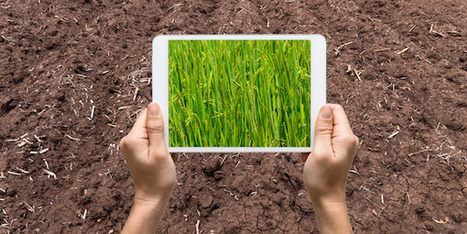 Agriculture et communication, comment reprendre la main ? - Wikiagri.fr | agriculture écologiquement intensive | Scoop.it