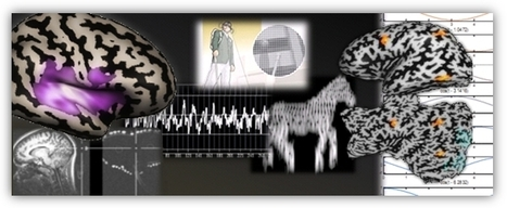 EyeMusic: Teaching the brain of blind people to see with sound | Amazing Science | Scoop.it