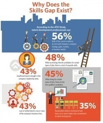 Skills Gap Negatively Impacting Business [infographic] I Sharlyn Lauby | Entretiens Professionnels | Scoop.it