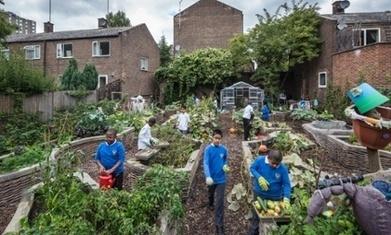 The roots of London's secondary school improvements | ESRC press coverage | Scoop.it
