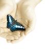 ChangeAgile | the power to transform