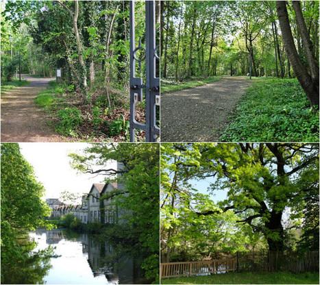 Balade nature à Strasbourg : la Robertsau, du Doernel à Pourtalès - Rue89 Strasbourg | Strasbourg Eurométropole Actu | Scoop.it