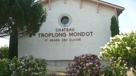 Château Troplong Mondot (Saint-Emilion) **** - Whisky Wine N' Beer | dordogne - perigord | Scoop.it