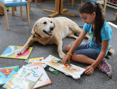 Sugar Grove Library's therapy dog program encourages kids to read aloud | Children's Literature - Literatura para a infância | Scoop.it