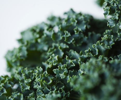 This Is Your Brain On Kale | Green Life, Healthy Life | Scoop.it