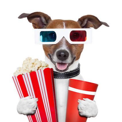 Ten Bean Bag Cinemas From Around the World   Inexpensive Furnishings   Scoop.it