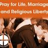 Catholic Social Justice Initiatives