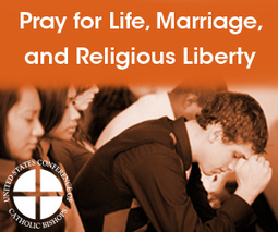 Fortnight for Freedom | Catholic Social Justice Initiatives | Scoop.it