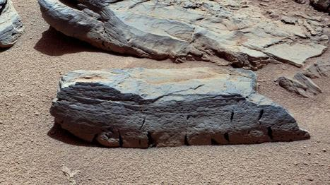 Une météorite martienne unique découverte en Afrique du Nord | A-arts-s s s (animaux, nature, écologie, peinture huile) | Scoop.it