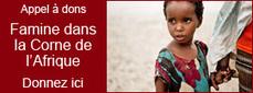 Mathématiques : Les TICE pour les liaisons inter-cycles notamment entre le CM2 et la 6ème (conférence de Sébastien Hache dans le cadre des Journées Académiques 2013 de l'IREM de Lille) | Moisson sur la toile: sélection à partager! | Scoop.it