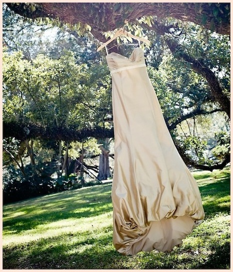 MORE Real Wedding | Gina + Jim | PreOwned Wedding Dresses | Oak Alley Plantation: Things to see! | Scoop.it