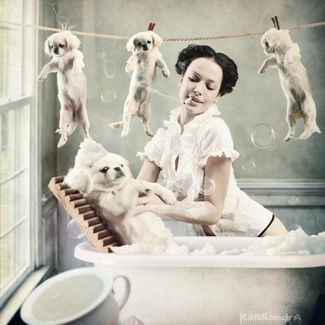 Beautiful Photography by Elena Vizerskaya | Random Ephemera | Scoop.it