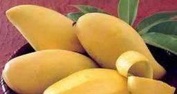 Ăn hoa quả cũng có nguy cơ gây bệnh - Sài Gòn Online | Sài Gòn Online | Scoop.it