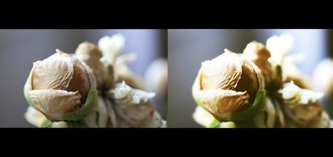Pimagic : Solution de retouche photos en ligne et gratuite | Photo numérique pour les nuls | Scoop.it