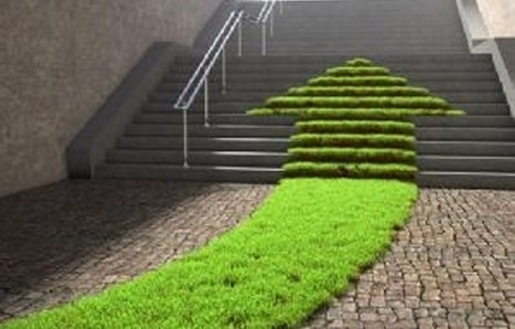 Room to Grow: A Look at the Changing Landscape of Green Startups | social entrepreneur | Scoop.it