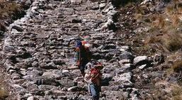 """De la convergencia a la divergencia...un camino """"de piedras""""! (Educación Disruptiva)   Competencias para el Aprendizaje   Scoop.it"""