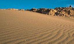 Desertificación y pérdida de hábitat   Deterioro Medioambiental   Scoop.it