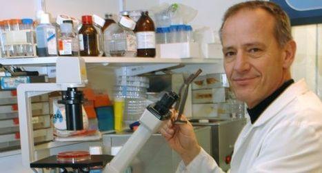 À Toulouse, on déchiffre les mystères du bacille de Koch   Institut de Pharmacologie et Biologie Structure   Scoop.it