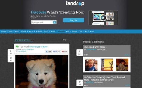 Discover, Collect And Share Any Content On The Web With Fandrop | So Me Social Media Marketing 2013 | Scoop.it