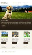 Get best Facebook template | templatesforpowerpoint | Scoop.it