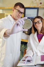 Artificial Platelets Could Treat Injured Soldiers on the Battlefield – and Set the Stage for Healing | Chemical Engineering Advancements | Scoop.it