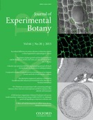 Cell wall-associated kinases and pectin perception | Emerging Research in Plant Cell Biology | Scoop.it