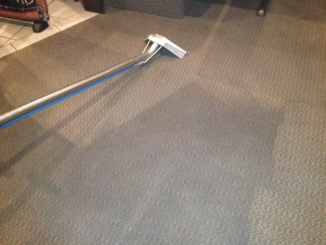 Methods To Dry A Wet Carpet | Vinyl Laying and Repair in Perth | Scoop.it