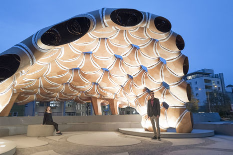 ICD/ ITKE Research Pavilion 2015-16 is based on sea-urchin shells - Arch2O.com | Biomimicry | Scoop.it