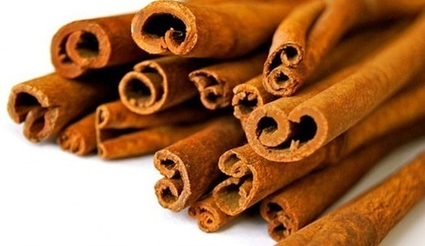 Breakthrough In Parkinson's Research? Cinnamon May Stop Its Progression | News You Can Use - NO PINKSLIME | Scoop.it
