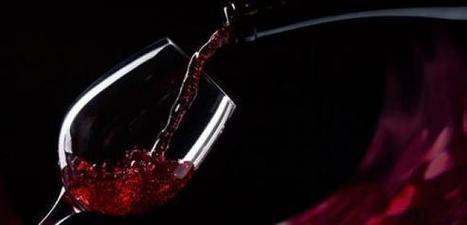 Marketing digital & Vin : Un ebook pour développer votre présence et vendre du vin sur Internet | Blog de Markentive, agence d'inbound marketing à Paris | Marketing - Vins et spiritueux | Scoop.it