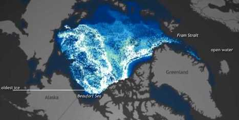 Shocking Video Shows How Insanely Fast Arctic Ice Is Disappearing | Global Warming effects on the Arctic | Scoop.it