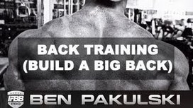 Big Back Training - Muscle Fitness Gains | Muscle Fitness Gains | Scoop.it
