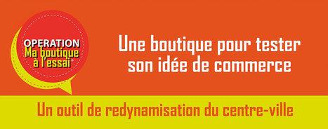 www.maboutiquealessai.fr | Développeur économique | Scoop.it