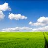 Keesen Crop Management:Micro irrigation,Green house,Irrigation