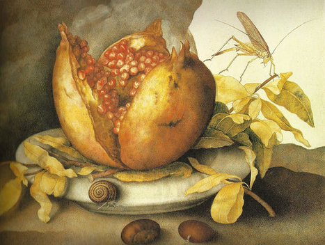 Giovanna Garzoni  (b. 1600 Ascoli Piceno - d. 1670)  still life from Le Marche | Le Marche another Italy | Scoop.it