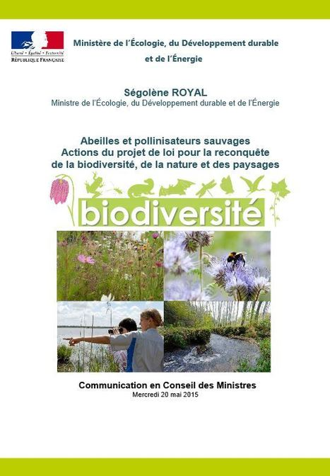 Un plan national d'actions « France, terre de pollinisateurs » - Ministère du Développement durable | EntomoNews | Scoop.it
