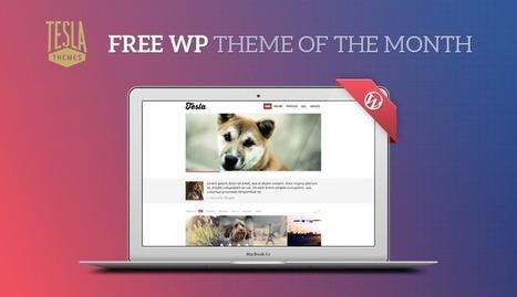 Get our Premium WordPress Theme for Free | TeslaThemes | Clean WordPress Themes | Scoop.it