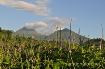 A soft cry from the fringes of Mount Bulusan   Philippine Travel   Scoop.it