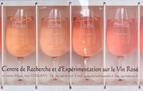 Des vins rosés haut en couleur | Le Vin et + encore | Scoop.it