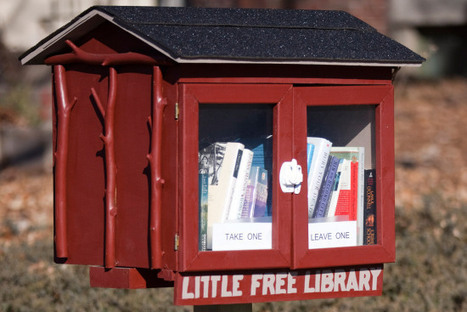 """City Forces 9-Year-Old Boy to Move """"Little Free Library"""" From Front Yard 