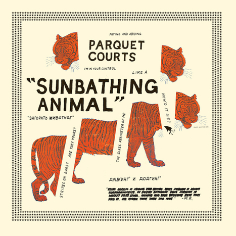 Album Review: Parquet Courts - Sunbathing Animal - Consequence of Sound | Reading Pool | Scoop.it