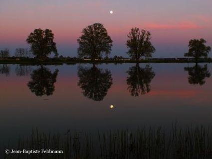 En bref : le 23 juin, admirez la plus grosse Pleine Lune de l'année | Astronomie | Scoop.it