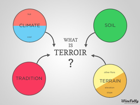 Terroir Definition for Wine | Wines and People | Scoop.it