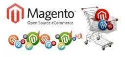 Magento Website Development - Hire Magento Developers | Magento Experts | Scoop.it