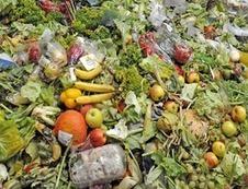 Du gaspillage alimentaire à tous les étages - Journal de l'environnement | Planete DDurable | Scoop.it