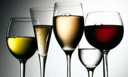 Best Wine Glasses: The Art of Great Wine Appreciation | Thehandyhouse | Shop kitchen tools and cookware | Scoop.it