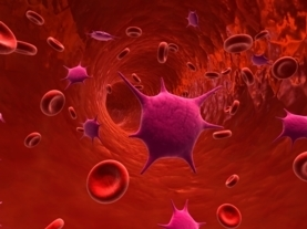 Disguised Nanoparticles Slip Past Body's Immune Defense - Scientific American | GMOs & FOOD, WATER & SOIL MATTERS | Scoop.it