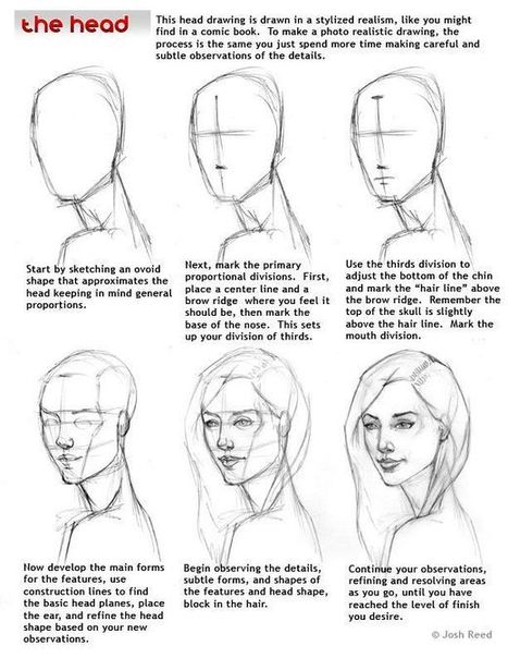 Human Head Drawing Reference Guide | Drawing References and Resources | Scoop.it