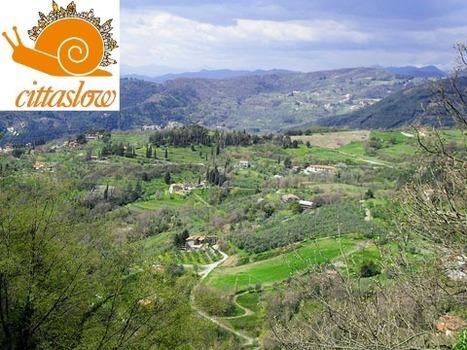 Italy's 4 Best Food Towns by CittaSlow | Italia Mia | Scoop.it